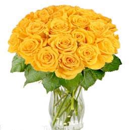 22枝黄玫瑰/对?#40644;?订花人鲜花