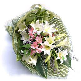铁炮百合12枝/美丽俏佳人-订花人鲜花