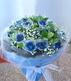 19枝蓝玫瑰/美丽的思念-订花人鲜花