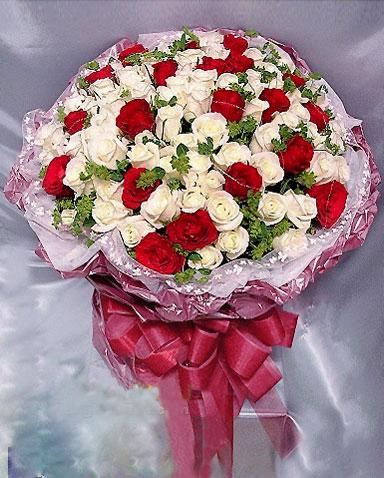 77枝白玫瑰/美��的��-�花人�r花