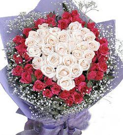 40枝红玫瑰/爱的旗帜