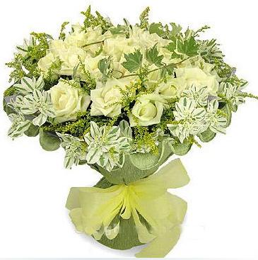 33枝白玫瑰/清纯女人香-订花人鲜花