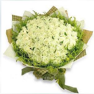 101枝白玫瑰/白色年�A-�花人�r花