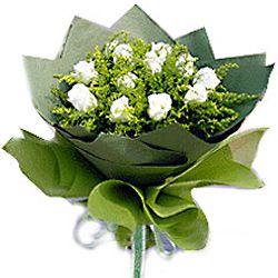 11枝白玫瑰/纯洁的爱