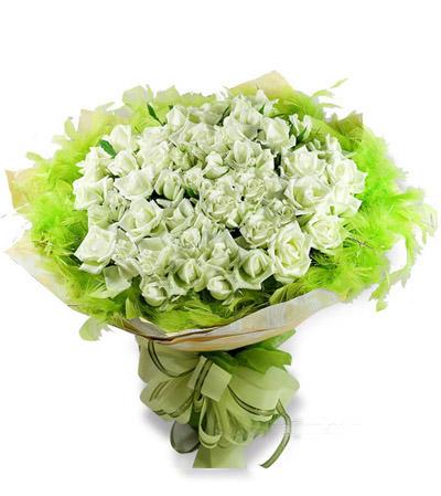 50枝白玫瑰/清纯佳人-订花人鲜花