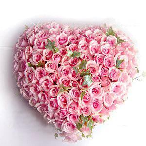 99枝粉玫瑰/我的心-�花人�r花