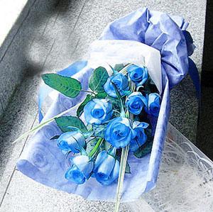 9枝蓝色妖姬/一生爱你-订花人鲜花