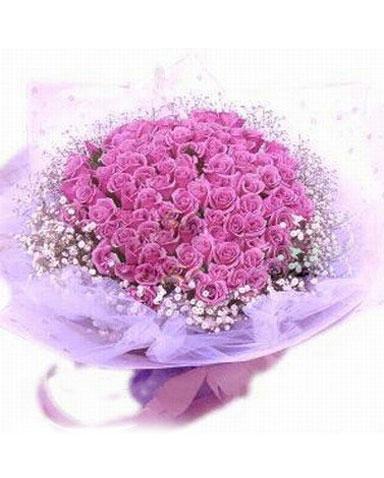99枝紫玫瑰/驿动心炬-订花人鲜花