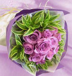 11枝紫玫瑰/一见钟情