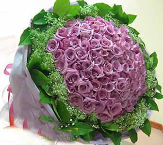 99枝紫玫瑰/爱你如初-订花人鲜花