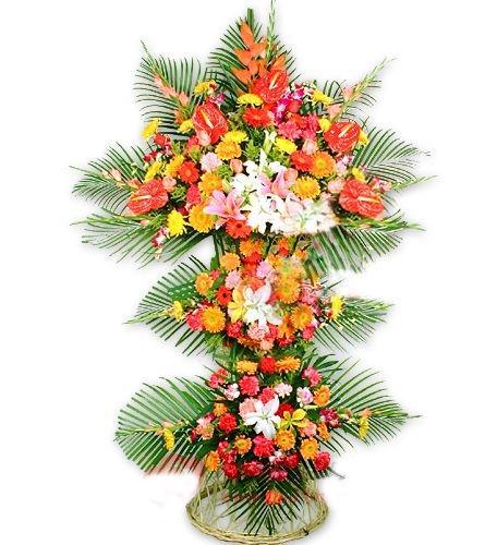 开业花篮/宏图大展-订花人鲜花