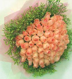 66枝粉玫瑰/情意�d�d