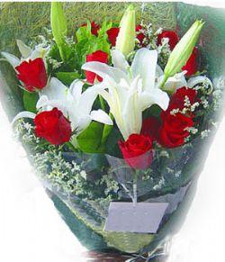 11枝红玫瑰/一生的幸福