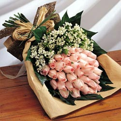 36枝粉玫瑰/情意绵绵-订花人鲜花