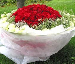 99枝红玫瑰/爱你到永远