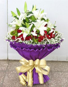 33枝�t玫瑰/紫浪漫
