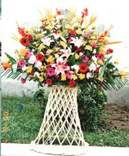 开业花篮/花开富贵-订花人鲜花