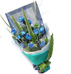 12枝蓝色妖姬/蓝色思考-订花人鲜花