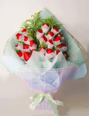 24枝红玫瑰/守护恋情-订花人鲜花