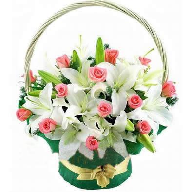 18枝粉玫瑰/很爱很爱你-订花人鲜花