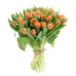29枝郁金香/送给我最思念的人-订花人鲜花