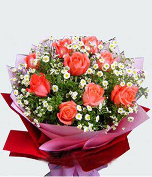 11枝粉玫瑰/一生依恋-订花人鲜花