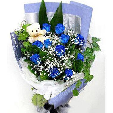 11枝蓝玫瑰/love you !baby-订花人鲜花