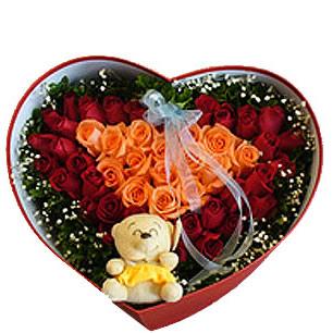 49枝玫瑰/主动爱上你-订花人鲜花