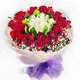 50枝玫瑰/气质佳人-订花人鲜花