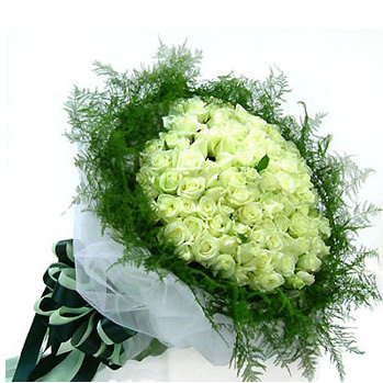 99枝白玫瑰/恰似你的温柔-订花人鲜花