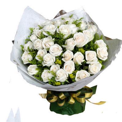 33枝白玫瑰/爱,用心以待-订花人鲜花
