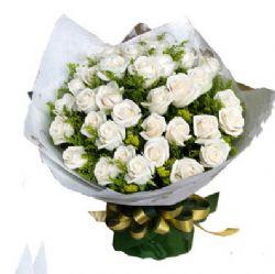 33枝白玫瑰/��,用心以待