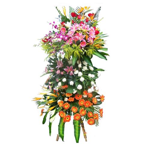 开业花篮/多财善贾-订花人鲜花