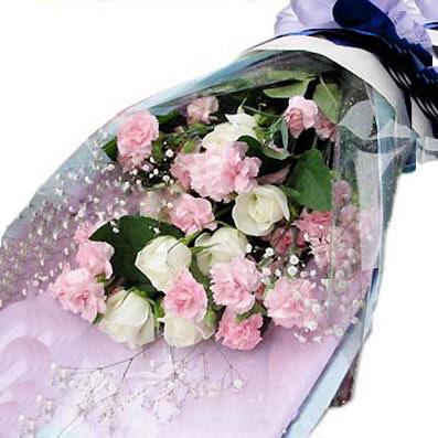 19枝康乃馨/妈妈,爱你-订花人鲜花