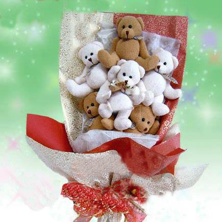 9只可爱彩色小熊/爱到深处-订花人鲜花