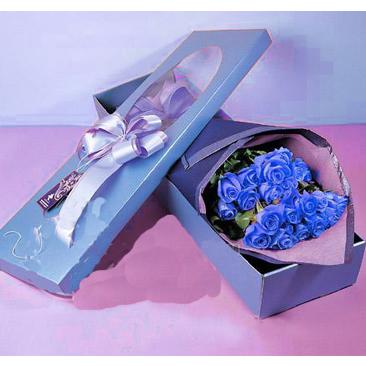22枝蓝玫瑰/我很在乎你-订花人鲜花
