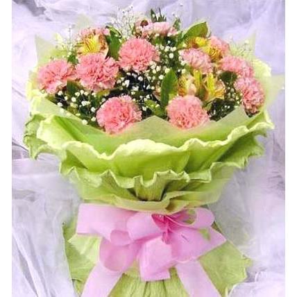 12朵粉色康乃馨/母亲.辛苦了