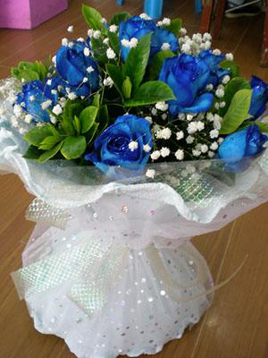11枝�{色妖姬/甜密的��-�花人�r花