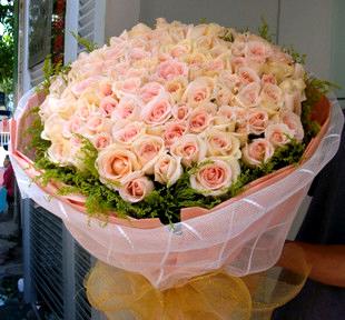 66枝玫瑰/�情于你