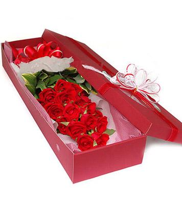 19枝红玫瑰/最爱-订花人鲜花