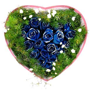 21枝蓝玫瑰/蓝色海洋-订花人鲜花