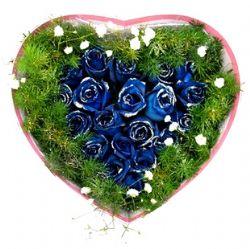 21枝蓝玫瑰/蓝色海洋