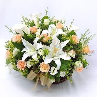 20枝香槟玫/真情不变-订花人鲜花