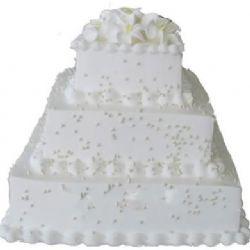 婚�c蛋糕/白色���