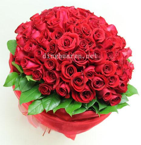 99枝红玫瑰/喜欢你