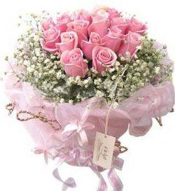 19枝粉玫瑰/相伴今生