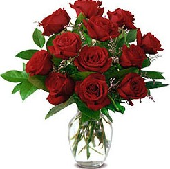 12枝红玫瑰/红火的日子-订花人鲜花