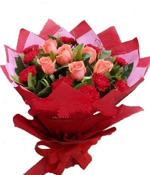 10枝红色康乃馨/我爱您-订花人鲜花