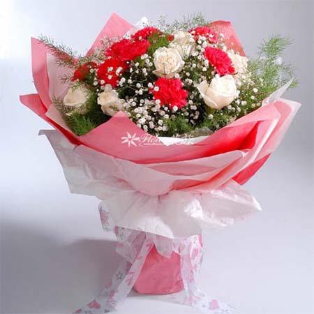 10朵红色康乃馨/妈妈叮咛-订花人鲜花