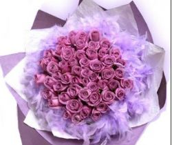33枝紫玫瑰/相知相�S